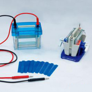 Electrophoresis Mini Double Vertical (small), Buffer Volume: 400ml,  Comb Thickness: 1.0 and 1.5 (mm), 1.0 KG