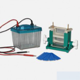 Double Vertical Electrophoresis, Buffer Volume: 1350ml, Simple Operation Requirements, Thermal Design, 1.0 KG