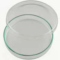 Petri Dish, 120 x 20 mm, Soda Glass, China (10pcs/pack)