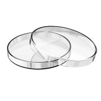 Petri Dish, 150 x 30 mm, Borosilicate Glass, China (10pcs/pack)